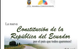 Un engendro: Constitución de 2008 (O) Juan J. Paz y Miño Cepeda