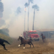 california_incendio