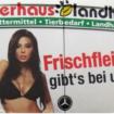 publicidad_sexo
