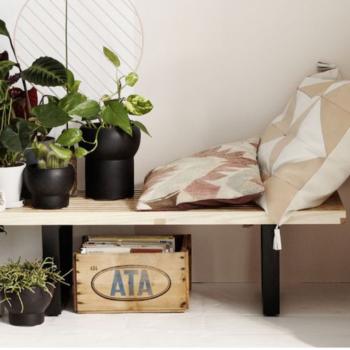 plantas_interiores