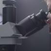microscopio_google