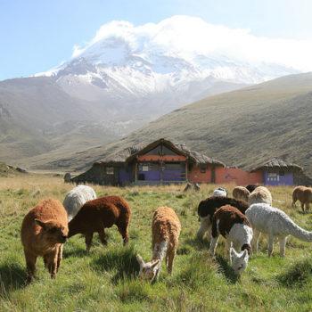 paisaje Ecuador 1