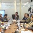 Comisión de Desarrollo Económico