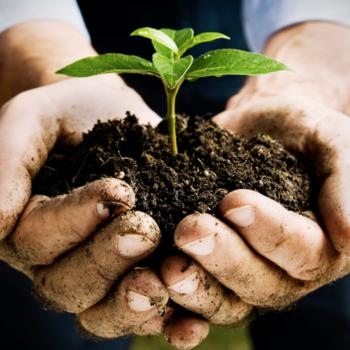 ambiente_sostenibilidad