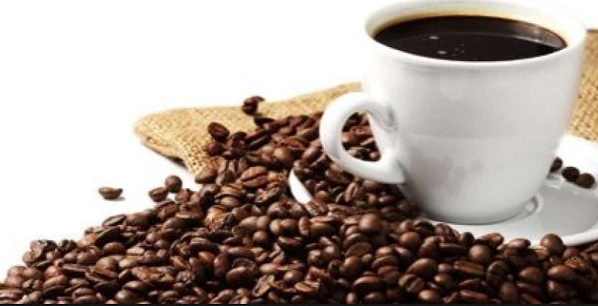 cafeina_1