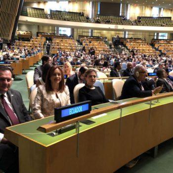 espinosa ONU